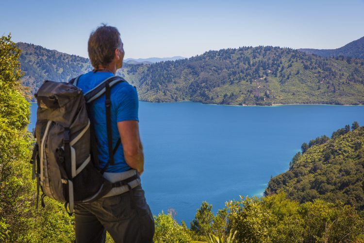 Coastal views on Queen Charlotte Track