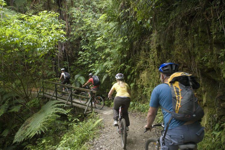 Mountain biking Mistletoe Bay to Anakiwa