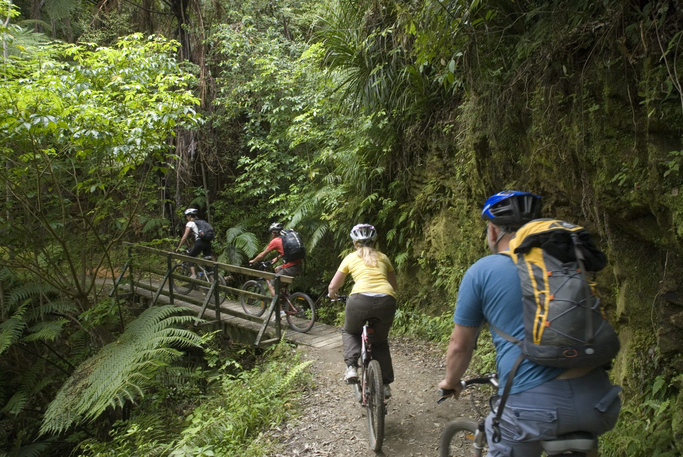 Riding Queen Charlotte Track from Mistletoe Bay to Anakiwa Marlborough Sounds NZ