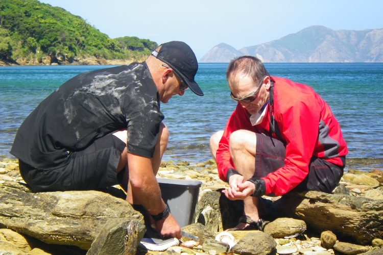 Preparing seafood on 3 day outer Queen Charlotte Sounds