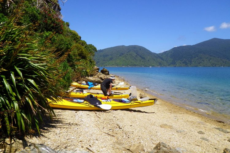 Sea kayaks at Motuara Island in the outer Queen Charlotte Sound Marlborough Sounds NZ