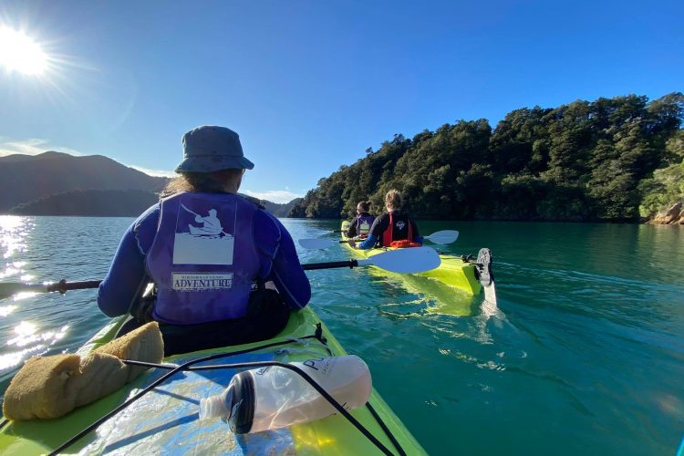 Sea kayaking Grove Arm, Queen Charlotte Sound NZ