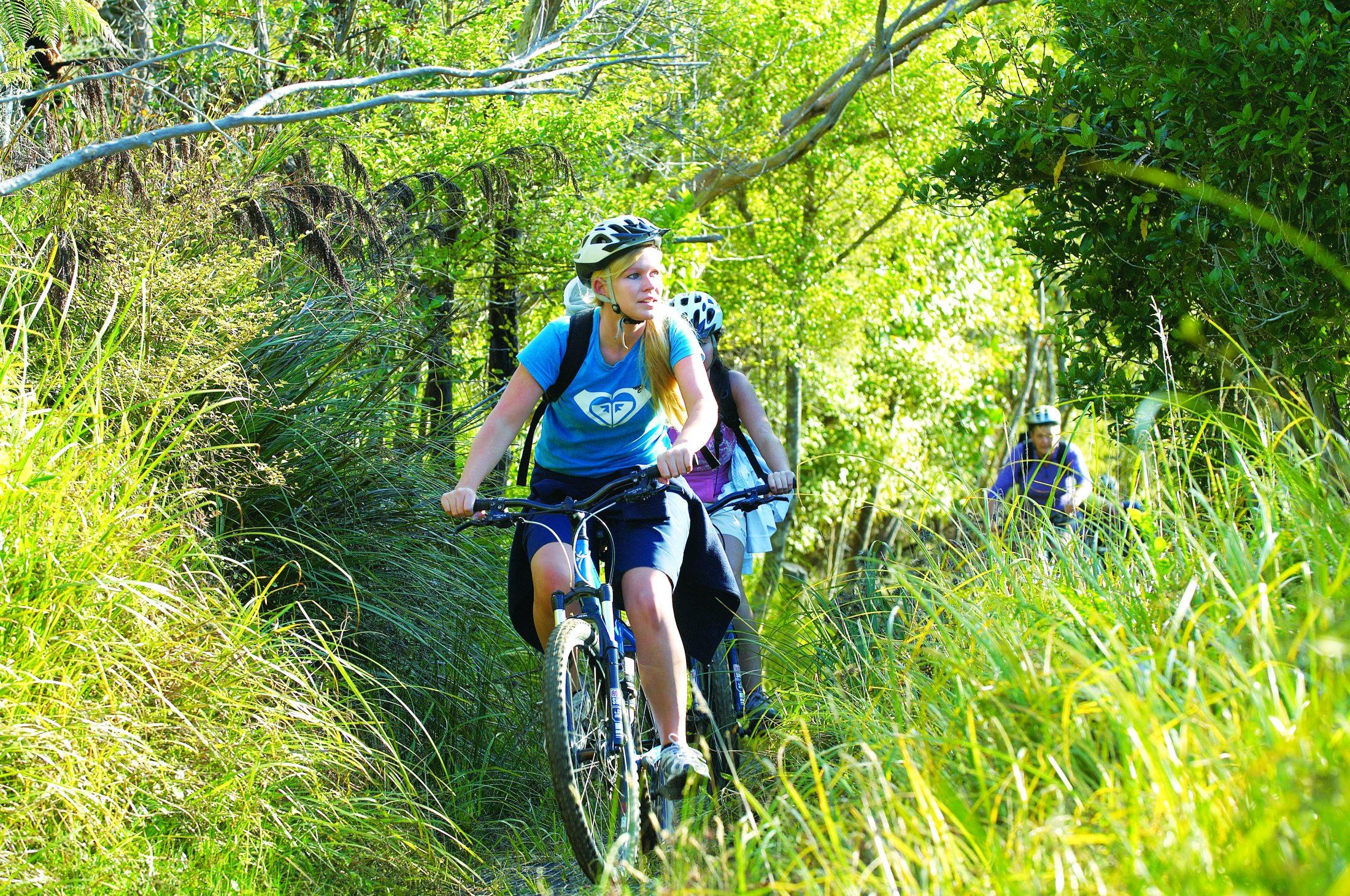 Riding around Onahau Bay Queen Charlotte Track